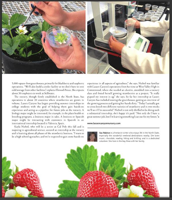Bearing Berries Enjoy Magazine Lassen Canyon Nursery